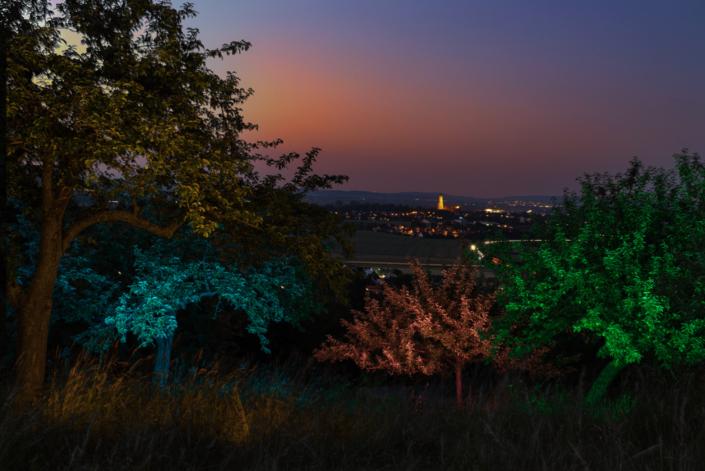 Blick ins Ries auf Nördlingen mit Lightpainting in den Bäumen von Ulrichs Fotografie